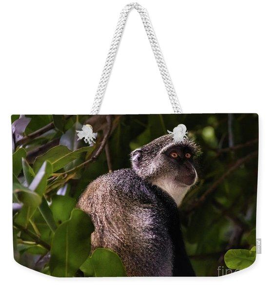 Blue Monkey, Zanzibar Weekender Tote Bag