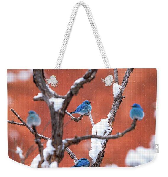 Bluebird Compass Weekender Tote Bag