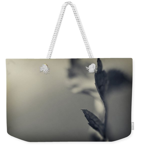 Weekender Tote Bag featuring the photograph Blurred Lines by Michelle Wermuth