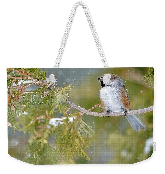 Boreal Chickadee In Winter Weekender Tote Bag