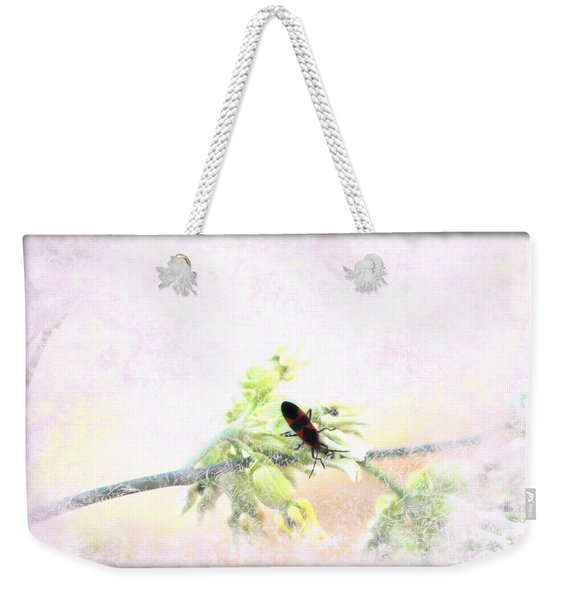 Boxelder Bug In Morning Haze Weekender Tote Bag