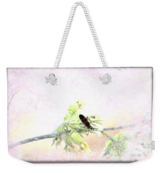 Boxelder Bug In Morning Haze Weekender Tote Bag