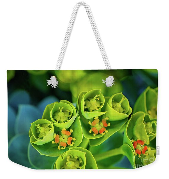 Brilliance In The Desert Weekender Tote Bag