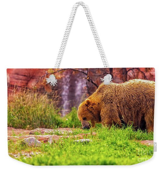 Weekender Tote Bag featuring the photograph Brisk Walk by Dheeraj Mutha