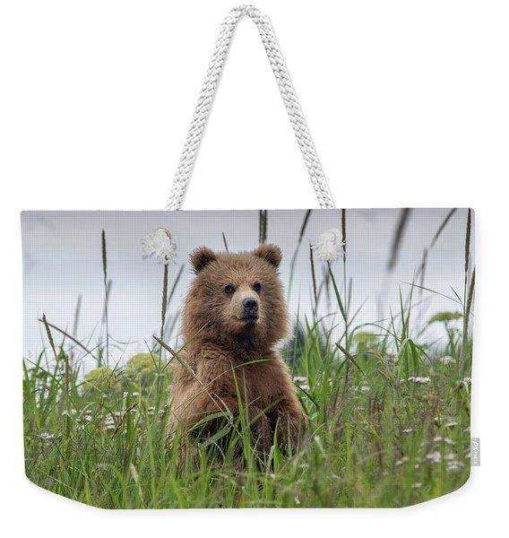 Brown Bear Cub In A Meadow Weekender Tote Bag