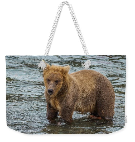 Brown Bear Stricking A Pose Weekender Tote Bag