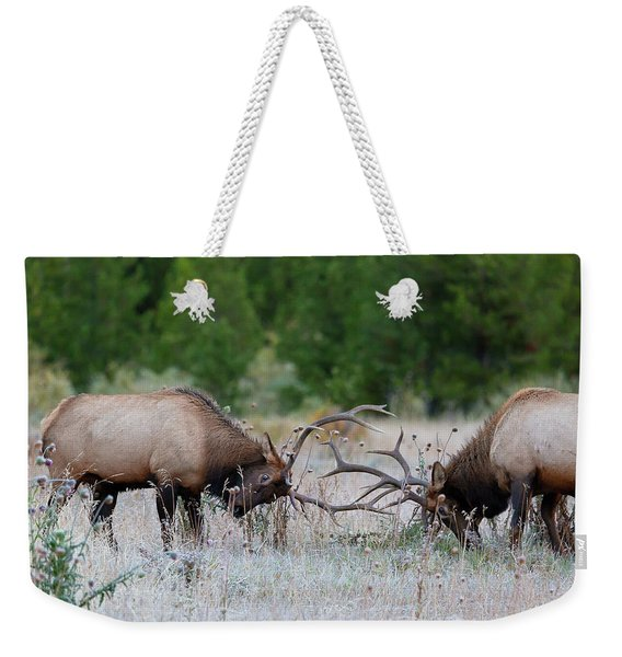 Bull Elk Battle Rocky Mountain National Park Weekender Tote Bag