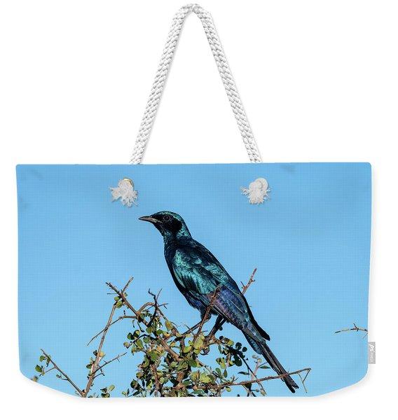 Burchell's Starling Weekender Tote Bag