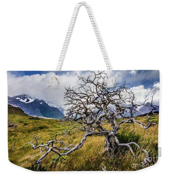 Burnt Tree, Torres Del Paine, Chile Weekender Tote Bag