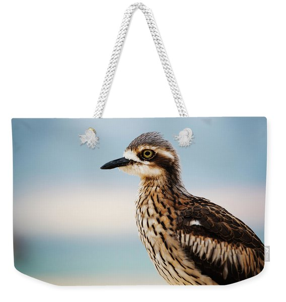 Bush Stone-curlew Resting On The Beach. Weekender Tote Bag