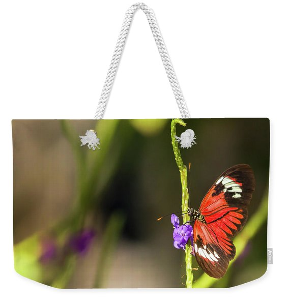Butterfly Landing On Purple Flower Weekender Tote Bag