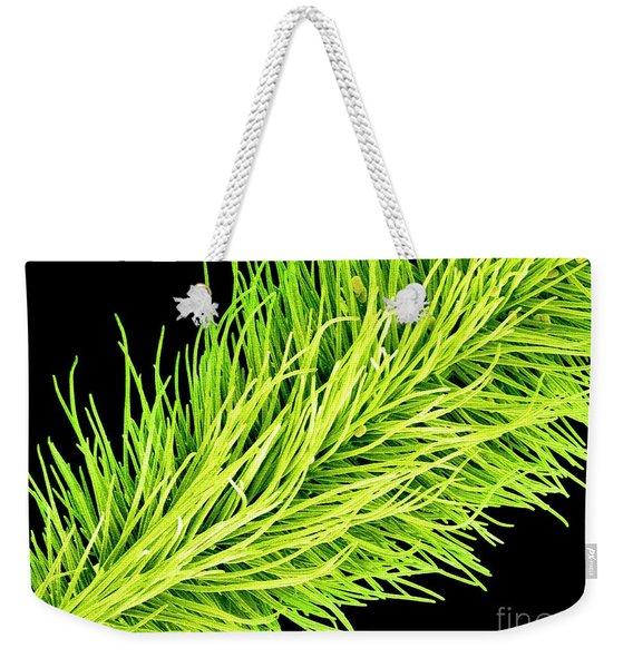 C016/0065 Weekender Tote Bag