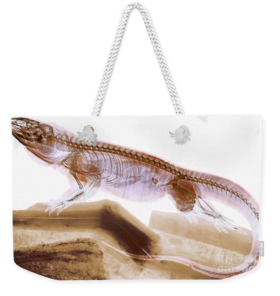 C025/8505 Weekender Tote Bag