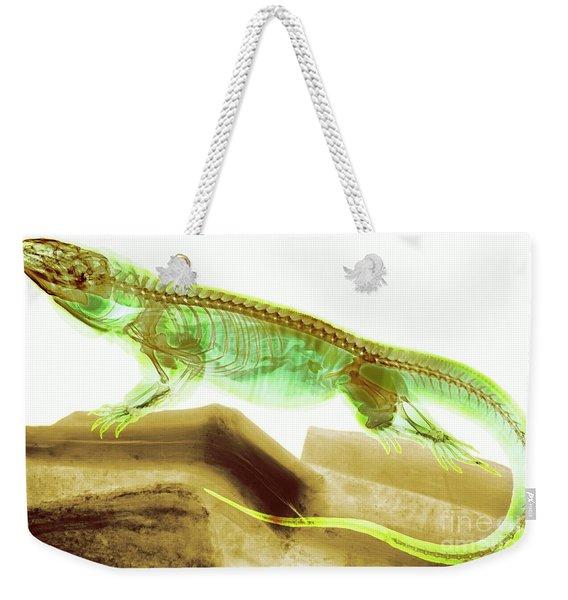 C025/8506 Weekender Tote Bag
