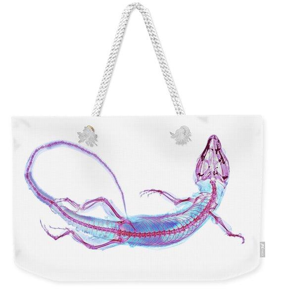 C025/8508 Weekender Tote Bag