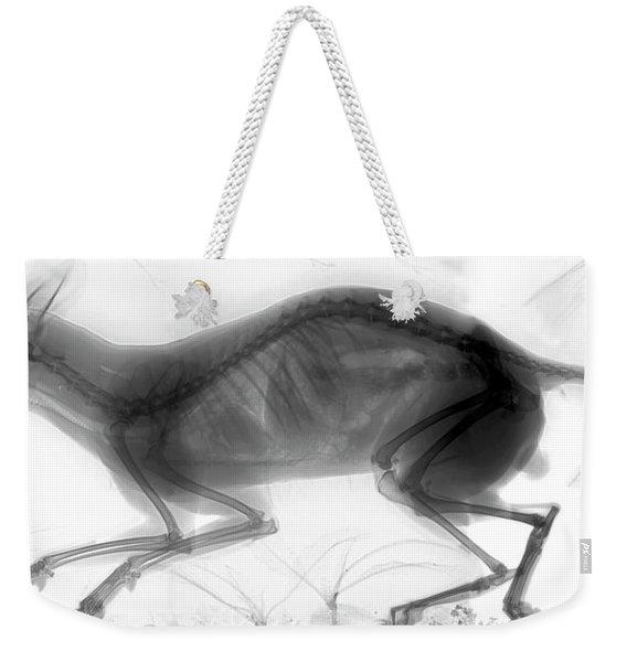 C026/6424 Weekender Tote Bag
