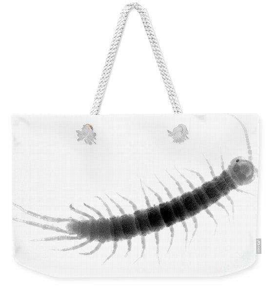 C027/0097 Weekender Tote Bag