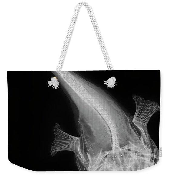 C038/4641 Weekender Tote Bag
