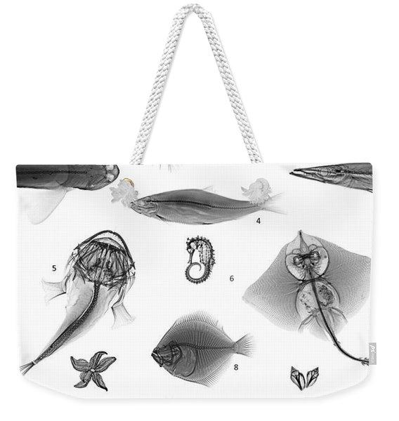 C038/4729 Weekender Tote Bag
