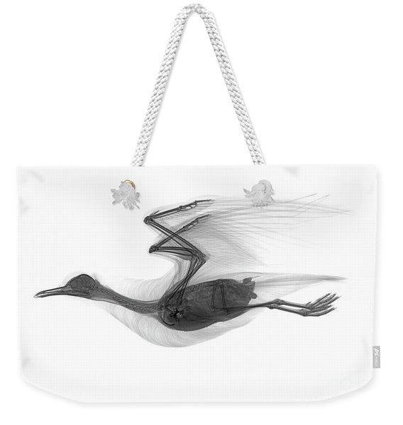C039/0616 Weekender Tote Bag