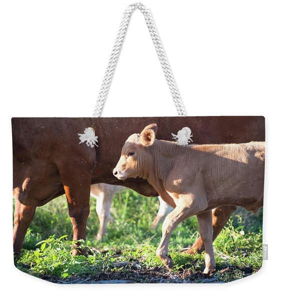 Weekender Tote Bag featuring the photograph Calf by Rob D Imagery