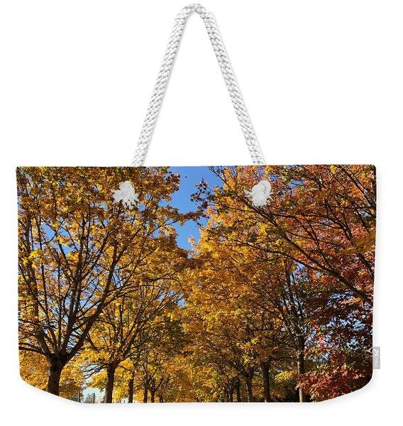 Canopy Of Color Weekender Tote Bag