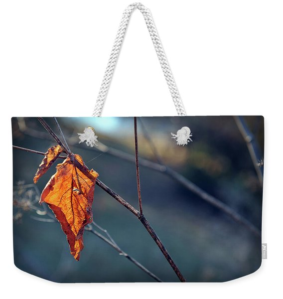 Weekender Tote Bag featuring the photograph Captured In Light by Michelle Wermuth