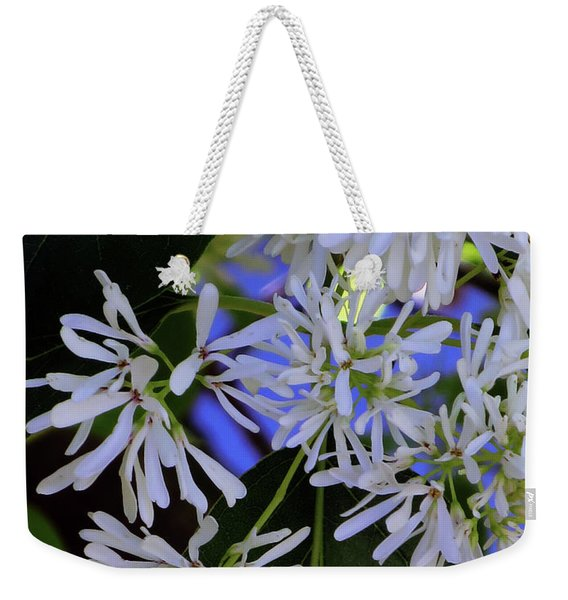 Carly's Tree - The Delicate Grow Strong Weekender Tote Bag