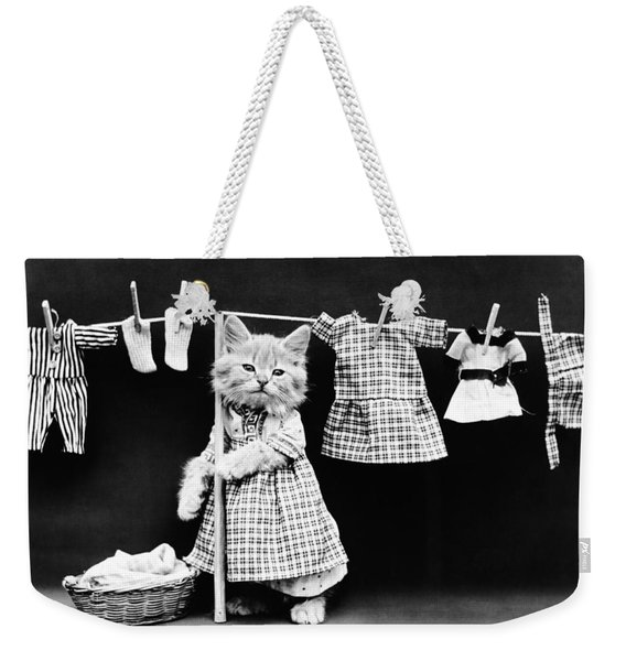 Cat Hanging Laundry On Clothesline - Harry Whittier Frees Weekender Tote Bag