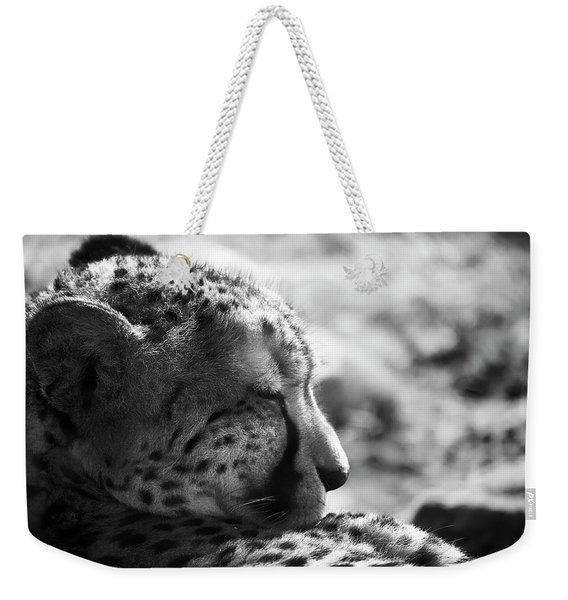 Weekender Tote Bag featuring the photograph Catnap by Whitney Goodey