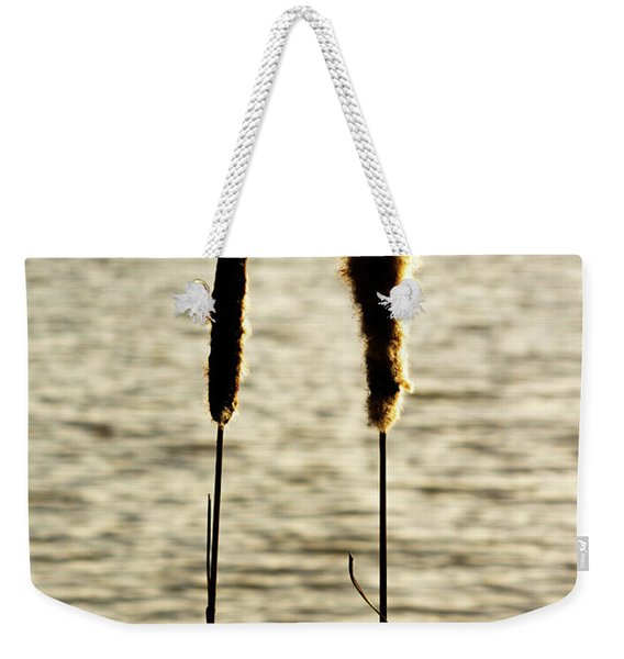 Weekender Tote Bag featuring the photograph Cattails In The Sun by Scott Lyons