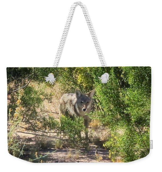 Cautious Coyote Weekender Tote Bag