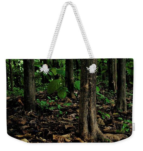 Cedar Trees Weekender Tote Bag