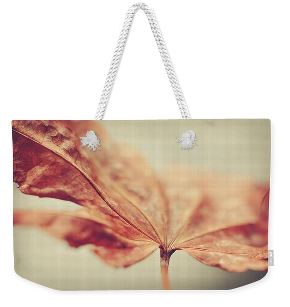 Weekender Tote Bag featuring the photograph Central Focus by Michelle Wermuth