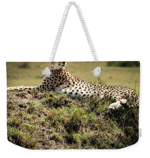 Weekender Tote Bag featuring the photograph Cheetah by Robin Zygelman