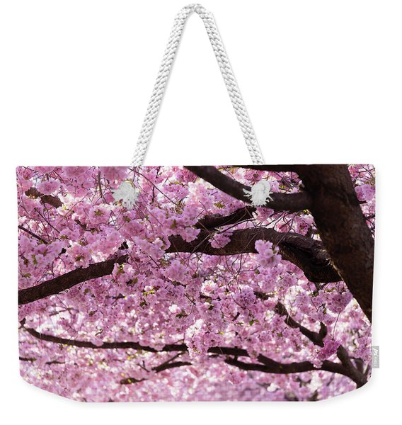 Cherry Blossom Trees Weekender Tote Bag