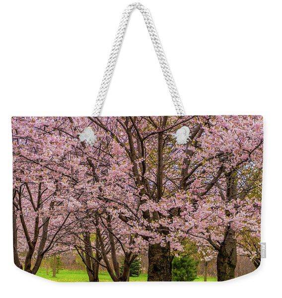 Cherry Blossoms 2 Weekender Tote Bag