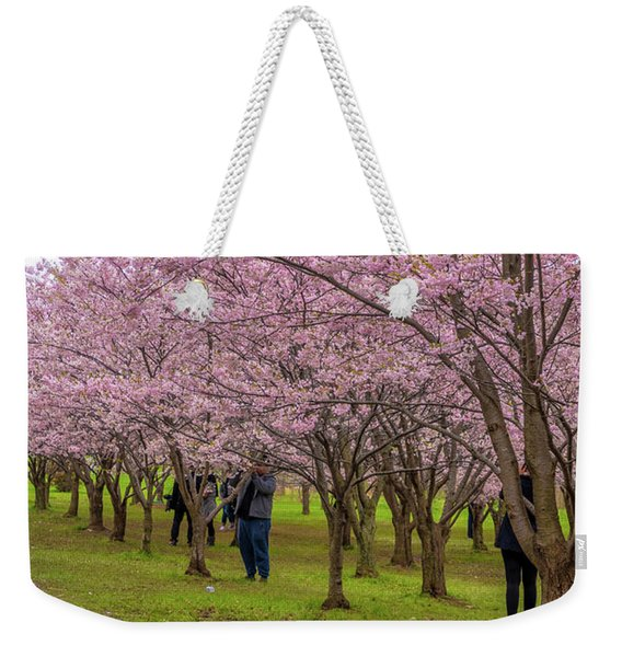 Cherry Blossoms 3 Weekender Tote Bag