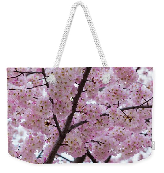 Cherry Blossoms 8611 Weekender Tote Bag