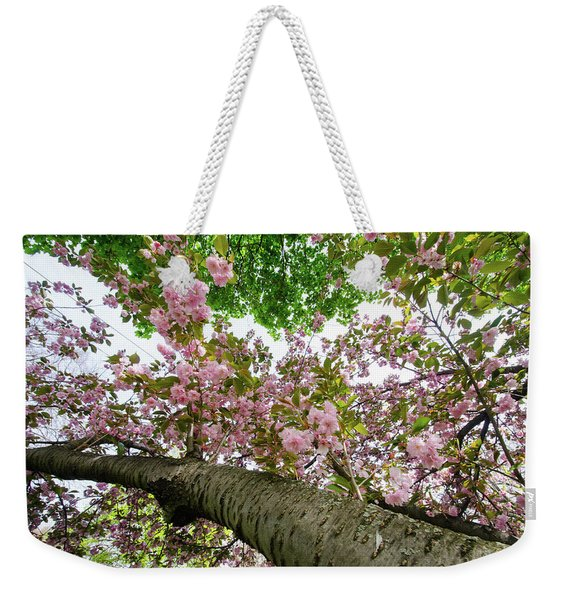 Cherry Blossoms Flowers Weekender Tote Bag