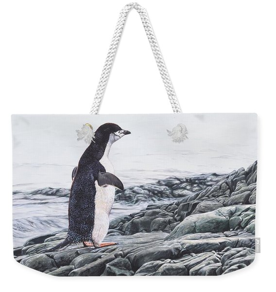 Weekender Tote Bag featuring the painting Chinstrap Penguin On A Rock By Alan M Hunt by Alan M Hunt