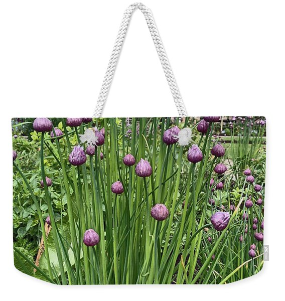 Chorley. Astley Hall. Walled Garden Chive Flowers. Weekender Tote Bag