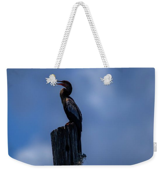 Cinematic Looking Anhinga Weekender Tote Bag
