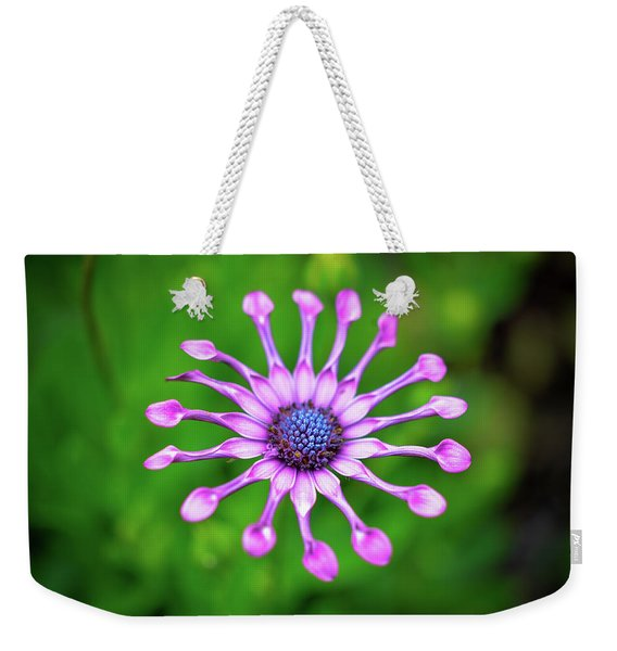 Weekender Tote Bag featuring the photograph Circular by Michelle Wermuth