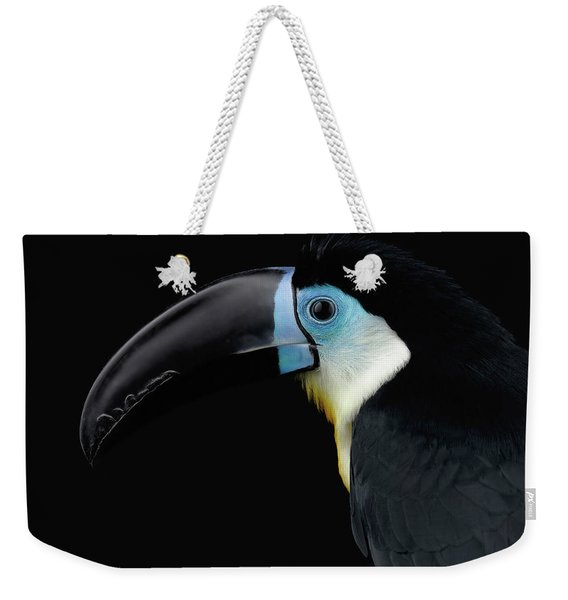 Close-up Channel-billed Toucan, Ramphastos Vitellinus, Isolated On Black Weekender Tote Bag