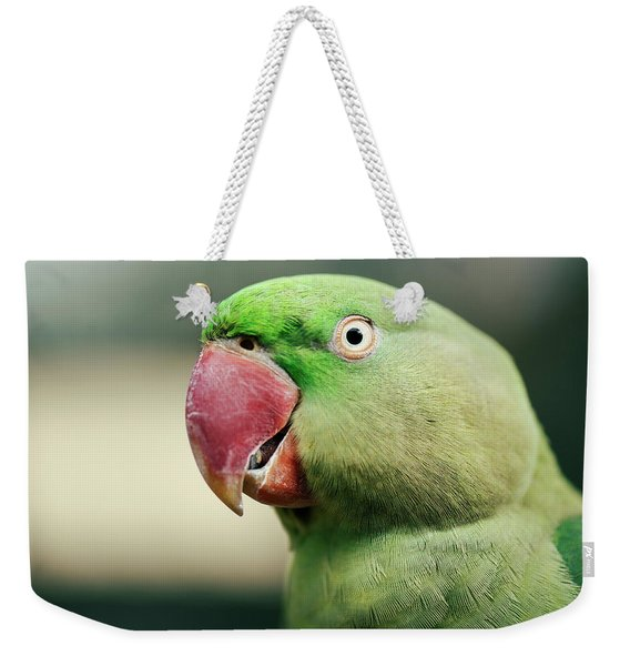 Close Up Of A King Parrot Weekender Tote Bag