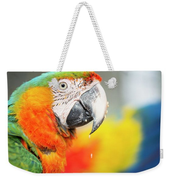 Close Up Of The Macaw Bird. Weekender Tote Bag