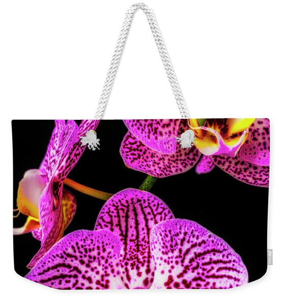Close Up Purple White Orchids Weekender Tote Bag