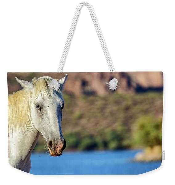 Closeup White Wild Horse With Lake Background Weekender Tote Bag