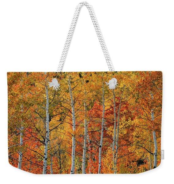 Colorful Glow Of Autumn Weekender Tote Bag